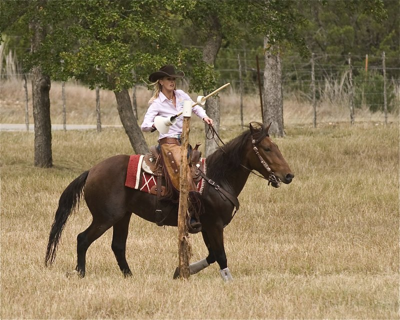 Extreme Cowboy Association Obstacles