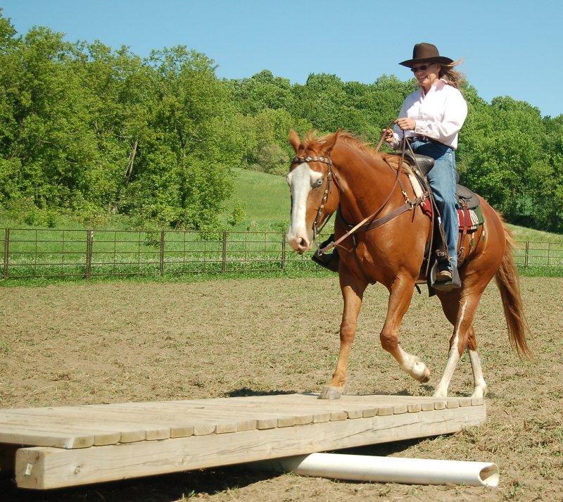 Diy curtain tie backs - Extreme Cowboy Association Exca